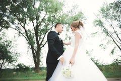 Gelukkig huwelijkspaar die in een botanisch park lopen royalty-vrije stock foto's