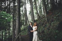 Gelukkig huwelijkspaar die in een botanisch park lopen stock fotografie