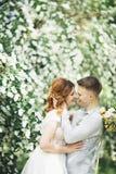 Gelukkig huwelijkspaar die in een botanisch park lopen royalty-vrije stock afbeelding