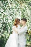 Gelukkig huwelijkspaar die in een botanisch park lopen stock afbeelding