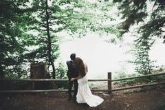 Gelukkig huwelijkspaar die in een botanisch park lopen royalty-vrije stock afbeeldingen