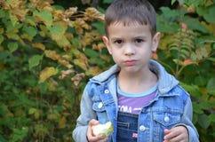 Gelukkig jong geitje die vruchten eten gelukkige leuke kindjongen die een appel eten in een de herfstpark stock fotografie