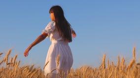 Gelukkig jong meisje die op een gebied van rijpe tarwe, langzame motie dansen Rijp tarwegewas op het gebied Landbouwzaken stock footage