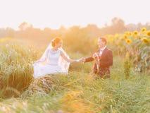 Gelukkig jonggehuwdepaar die bij hun huwelijksdag op het zonnebloemgebied lopen op zonsondergang Stock Foto's