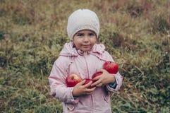 Gelukkig kind die rode appelen in zijn handen houden Oogst Grappig jong geitje in openlucht in de herfstpark royalty-vrije stock afbeelding
