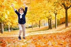 Gelukkig kind, jongen, die in het park spelen, werpend bladeren, het spelen Stock Afbeeldingen
