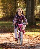 Gelukkig kind op fiets in de herfstbos Stock Afbeelding