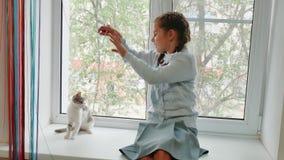 Gelukkig kindmeisje met haar het venstervensterbank van de kattenzitting bij zonsondergang het meisje wordt gespeeld met witte gr stock videobeelden