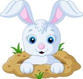 Gelukkig konijntjesbeeldverhaal in het gat vector illustratie