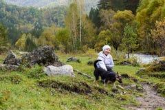 Gelukkig meisje Het landschap van de berg Mooie hond stock fotografie