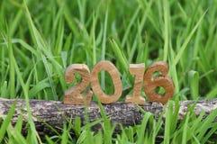 Gelukkig Nieuwjaar 2016, aardconcept en houten aantalidee Stock Afbeelding
