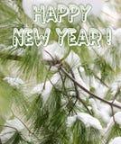 Gelukkig Nieuwjaar - de Pijnboomboom vertakte zich en sneeuw Royalty-vrije Stock Afbeelding