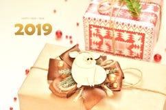 Gelukkig Nieuwjaar, 2019 Jaar van het varken stock afbeelding