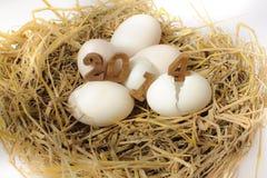 Gelukkig Nieuwjaar 2014 op een nest van hooi Stock Afbeelding