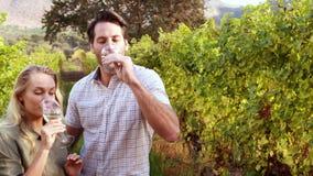 Gelukkig paar die en witte wijn roosteren drinken stock videobeelden