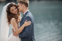 Gelukkig paar in liefde met de bruidegom en de bruid tegen de achtergrond van de bergen dichtbij de blauwe oceaan Stock Fotografie