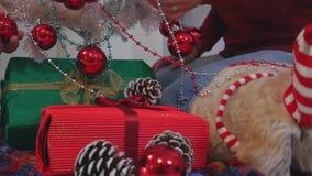 Gelukkig paar met hond, allen die in Kerstmiskleren dichtbij Kerstboom zitten stock footage