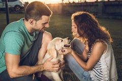 Gelukkig paar met puppyhond in het land Het Golden retriever van het puppyras Paar in een zonsondergang met puppyhond royalty-vrije stock foto's