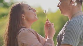 Gelukkig paar samen op aard Het meisje in liefde blaast een paardebloem Gezamenlijk omhels in de zon stock videobeelden