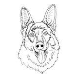 Gelukkig speepdoghoofd vector illustratie