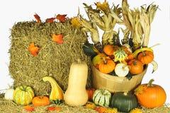 Gelukkig Thanksgiving day. Royalty-vrije Stock Afbeelding