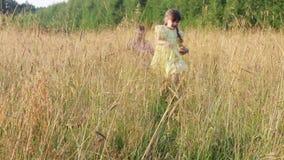 Gelukkig weinig die jongen en meisje in droog gras bij de zomeravond in werking wordt gesteld stock video