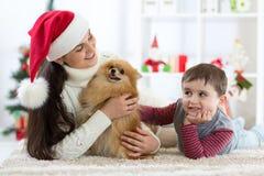 Gelukkig weinig jong geitjejongen, moeder en hond bij Kerstmis stock afbeeldingen