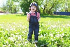 Gelukkig weinig kind met blowball in openlucht in de zomer Royalty-vrije Stock Afbeeldingen