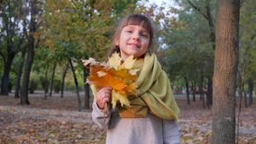 Gelukkig weinig wijfje die bij camera met de herfst gele bladeren ter beschikking glimlachen in park stock video