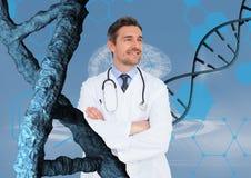 Gelukkige artsenmens die zich met 3D DNA-bundels bevinden Royalty-vrije Stock Foto's