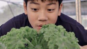 Gelukkige Aziaat weinig jongen met een groene salade voor gezonde voeding, uitdrukken gelukkig om groenten te eten stock video