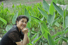 Gelukkige Aziatische rijpe vrouw Stock Fotografie