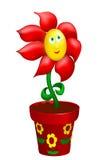 Gelukkige bloem in verfraaide pot Stock Afbeeldingen
