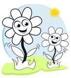 Gelukkige bloemen in de zon Royalty-vrije Stock Foto's