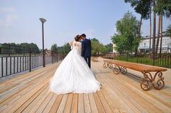 Gelukkige bruid en bruidegom die het kussen op de brug, spruit van rug omhelzen royalty-vrije stock afbeelding