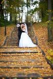 Gelukkige bruid en bruidegom in geel de herfstgebladerte Stock Afbeelding