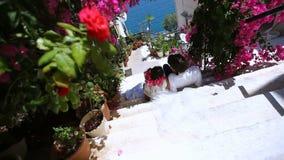 Gelukkige bruid en bruidegom tegen de achtergrond van bloemen De dag van het huwelijk stock videobeelden
