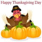 Gelukkige Dankzegging Turkije en Pompoenen Stock Afbeelding