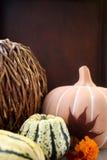 Gelukkige Dankzeggingspompoen en pompoen stock fotografie