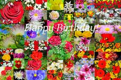 Gelukkige de collageprentbriefkaar van Verjaardagsbloemen Royalty-vrije Stock Foto's