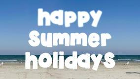 Gelukkige de zomervakantie stock footage