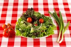 Gelukkige die salade, gezicht met gezonde organische groenten wordt gemaakt Stock Foto