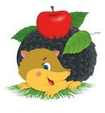 Gelukkige egel en Apple Stock Afbeeldingen