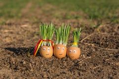 Gelukkige eieren Stock Afbeeldingen