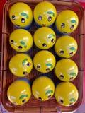Gelukkige eieren Royalty-vrije Stock Afbeelding