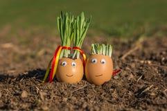 Gelukkige eieren in liefde Stock Afbeelding