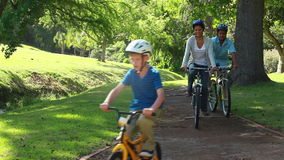 Gelukkige familie berijdende fietsen op een weg stock videobeelden