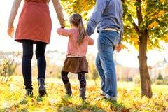 Gelukkige familie die bij zonsondergang in het park in de herfst lopen stock foto