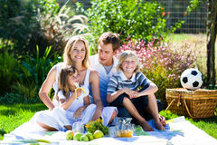Gelukkige familie die een picknick heeft Stock Foto
