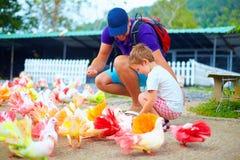 Gelukkige familie die kleurrijke duifvogels op landbouwbedrijf voeden Stock Foto